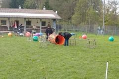 Treibball-Seminar 012 (1)